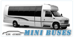 Mini Bus rental in Atlanta, GA